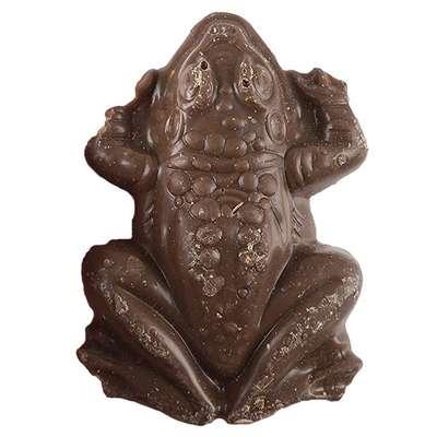 Шоколадная лягушка Гарри Поттера Jelly Belly 15 гр, фото 2